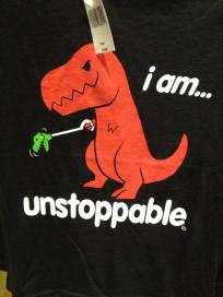 I saw this shirt at Animal Kingdom and thought it was perfect.