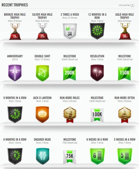 A sweet view.  Most of the Nike+ Running awards I earned.