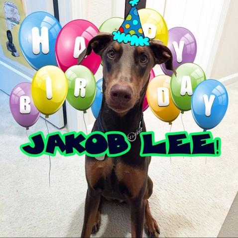 Jakob_1st birthday.jpg